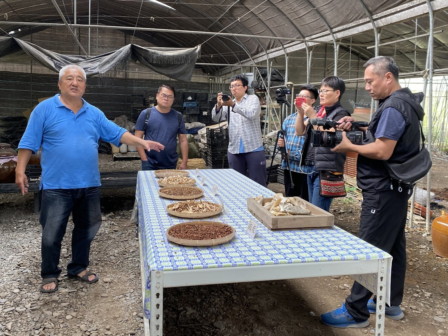 Tour of Green Farm guided by Walis Perlin